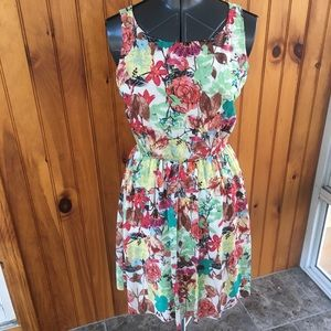 Alice and Olivia floral medium fit and flare dress